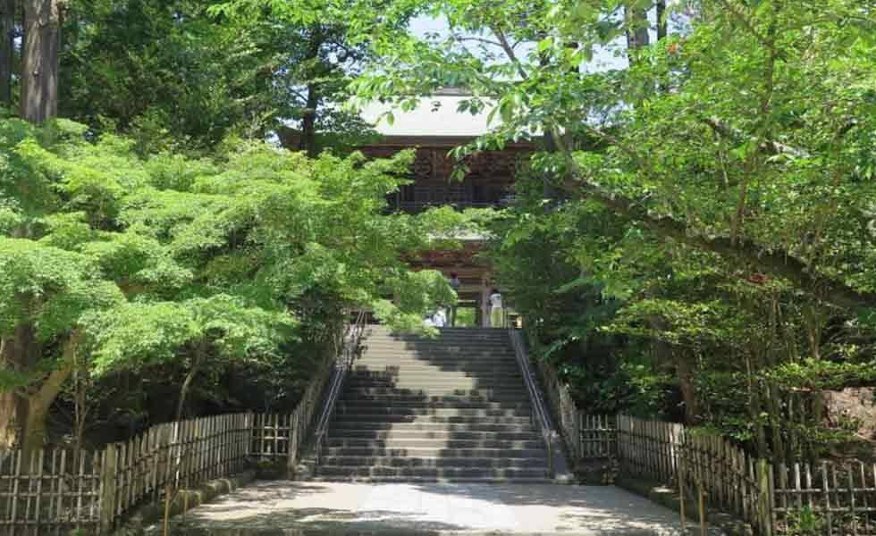 Kamakura Buddhist Temple Visit Asia Module 2018